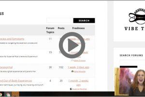 Sneak Peek Video:  Virtual Tour of Vibe Tribe