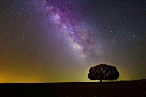 Spiritual Awakening Symptoms Update: Emotions on the Rise